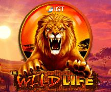 Wild Life Slot Machine Free Play